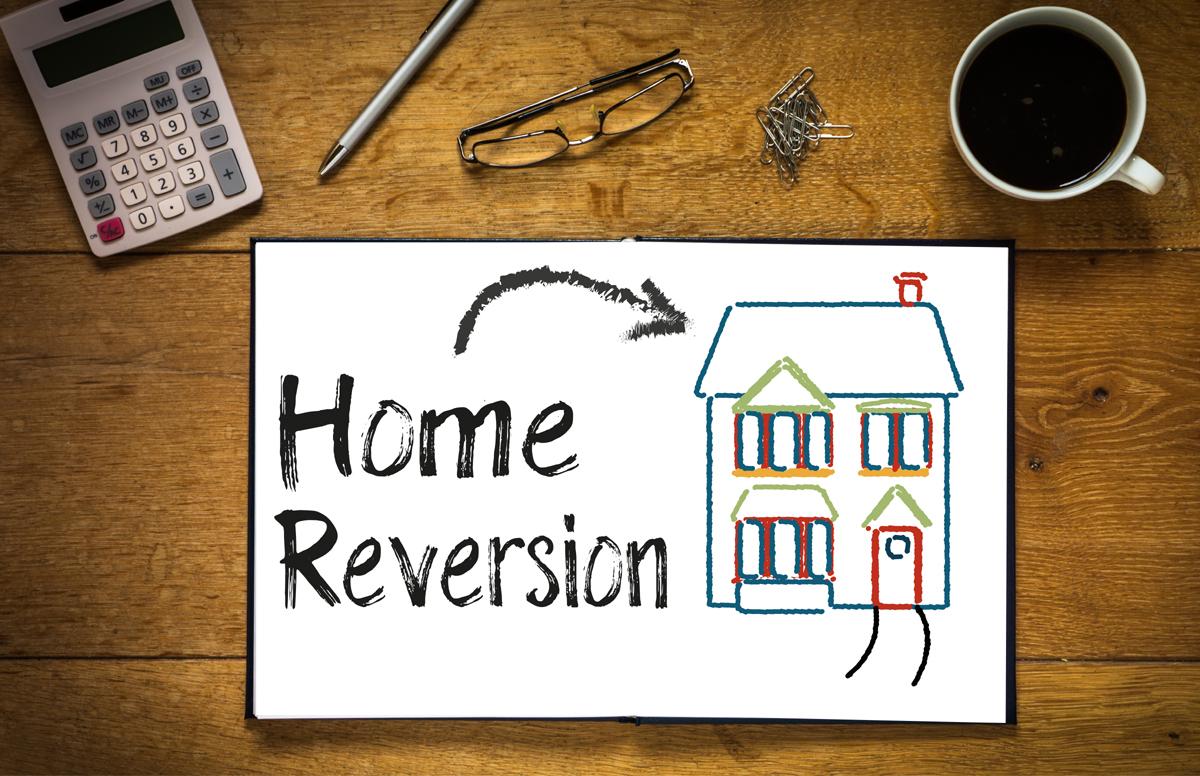 Reversion Plan Somerset